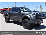 2017 F-150 Crew Cab 4x4 Pickup #713115 - photo 1