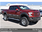 2017 F-150 Crew Cab 4x4 Pickup #735785 - photo 1