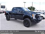 2017 F-250 Crew Cab 4x4 Pickup #754198 - photo 1