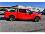 2018 F-150 Crew Cab Pickup #808806 - photo 3