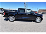 2018 F-150 Crew Cab Pickup #851240 - photo 3