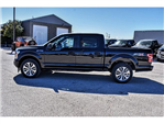 2018 F-150 Crew Cab Pickup #851240 - photo 5