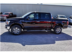 2018 F-150 SuperCrew Cab 4x4, Pickup #898917 - photo 5