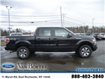 2014 F-150 Super Cab 4x4, Pickup #X8018 - photo 6