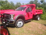 2018 F-450 Regular Cab DRW 4x4,  Dump Body #G4550 - photo 5