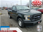 2016 F-150 Regular Cab Pickup #H2882 - photo 1