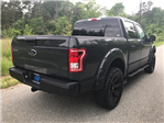 2017 F-150 Crew Cab 4x4 Pickup #177801 - photo 4