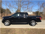 2017 F-150 Crew Cab 4x4, Pickup #177830 - photo 10