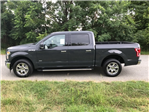 2017 F-150 Super Cab Pickup #178066 - photo 10