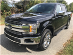 2018 F-150 Crew Cab 4x4 Pickup #188147 - photo 10