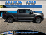 2017 F-250 Crew Cab 4x4 Pickup #H7252 - photo 1