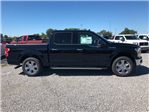 2018 F-150 Crew Cab Pickup #J1354 - photo 3