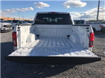 2018 F-150 SuperCrew Cab 4x2,  Pickup #J2520 - photo 10