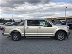 2018 F-150 Crew Cab, Pickup #J2750 - photo 3