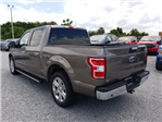 2018 F-150 SuperCrew Cab 4x2,  Pickup #J6160 - photo 4