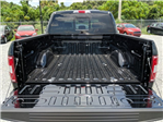 2018 F-150 SuperCrew Cab 4x2,  Pickup #J6495 - photo 11