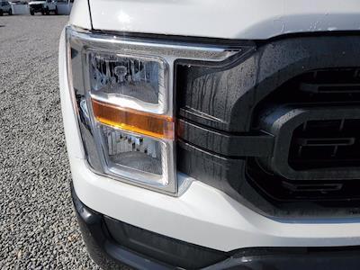 2021 Ford F-150 Regular Cab 4x2, Pickup #M2214 - photo 4
