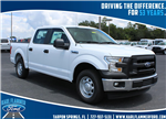 2017 F-150 Super Cab Pickup #7W1C3826 - photo 1