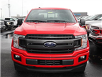 2018 F-150 SuperCrew Cab, Pickup #8W1C4669 - photo 3
