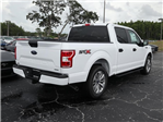 2018 F-150 SuperCrew Cab 4x2,  Pickup #8W1C9254 - photo 4