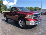 2018 Ram 1500 Regular Cab 4x4,  Pickup #18310 - photo 7