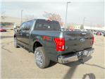 2018 F-150 Crew Cab 4x4, Pickup #00058162 - photo 2
