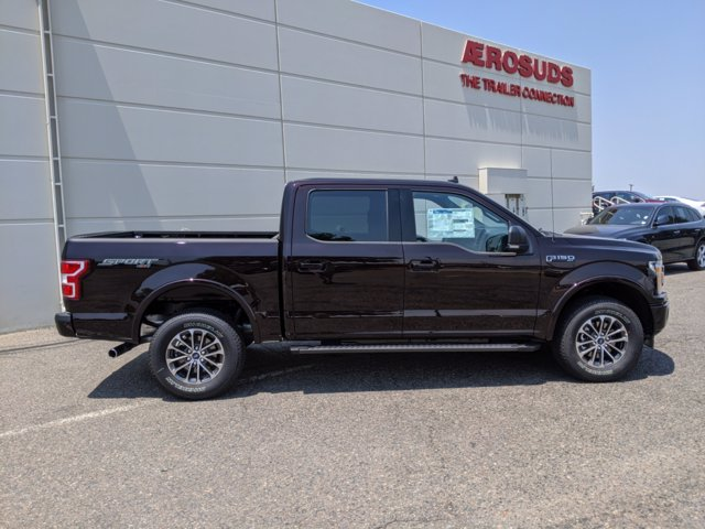 2020 Ford F-150 SuperCrew Cab 4x4, Pickup #00062062 - photo 4