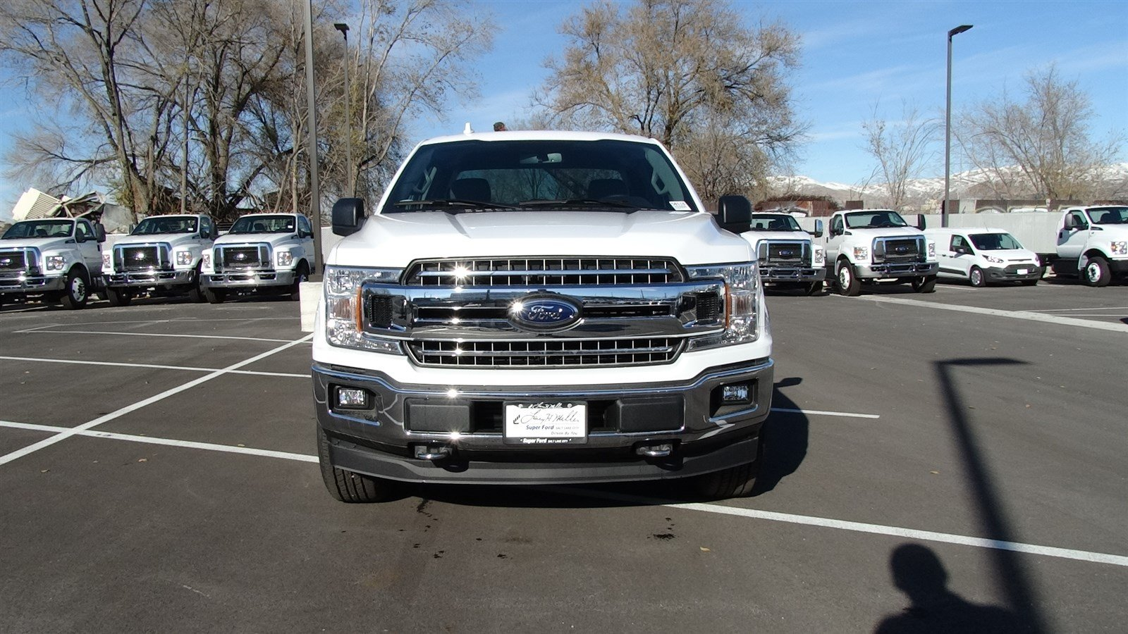 2018 F-150 Super Cab 4x4,  Pickup #50118 - photo 8