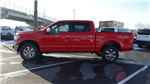 2018 F-150 SuperCrew Cab 4x4,  Pickup #50374 - photo 6