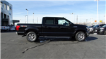 2018 F-150 SuperCrew Cab 4x4,  Pickup #50549 - photo 3