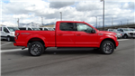 2018 F-150 SuperCrew Cab 4x4,  Pickup #50809 - photo 3