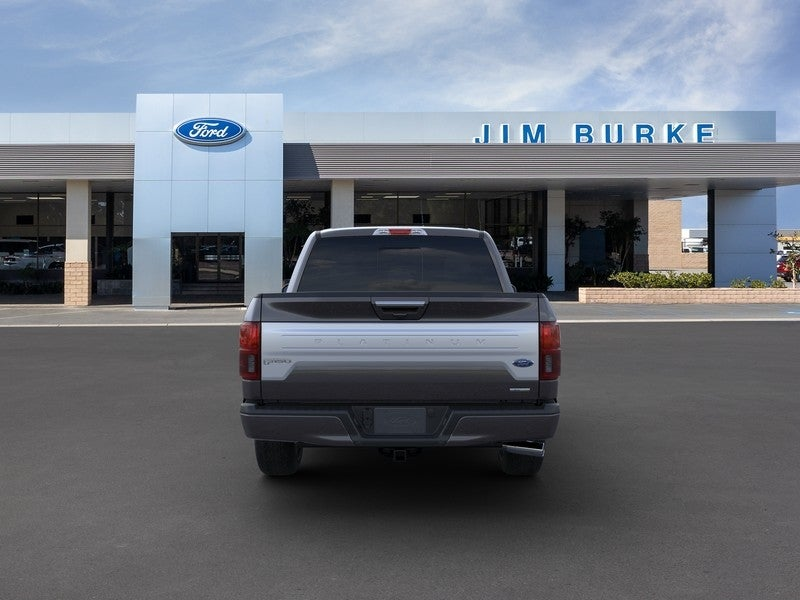 2019 Ford F-150 SuperCrew Cab 4x4, Pickup #1E01350 - photo 5