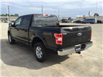 2018 F-150 SuperCrew Cab 4x4,  Pickup #E55584 - photo 6