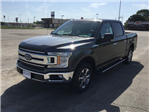 2018 F-150 SuperCrew Cab 4x2,  Pickup #E63743 - photo 4