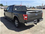 2018 F-150 SuperCrew Cab 4x2,  Pickup #E63743 - photo 6