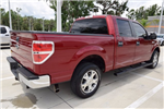 2013 F-150 Crew Cab, Pickup #A32166C - photo 1