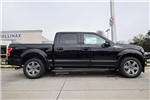 2018 F-150 SuperCrew Cab 4x2,  Pickup #FB81145 - photo 3