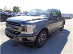 2018 F-150 SuperCrew Cab, Pickup #FB51605 - photo 6