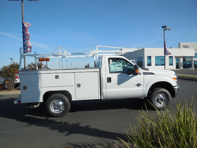 2015 F-250 Regular Cab 4x4,  Scelzi Crown Service Body #EA48160 - photo 3
