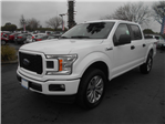 2018 F-150 Crew Cab 4x4, Pickup #53101 - photo 1