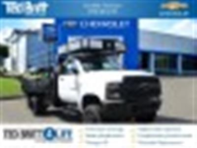 2019 Chevrolet Silverado Medium Duty Regular Cab 4x4, PJ's Concrete Body #T90830 - photo 1