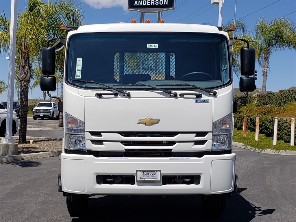 2019 Low Cab Forward Regular Cab 4x2,  Cab Chassis #T19043 - photo 1