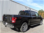 2017 F-150 Crew Cab 4x4 Pickup #17T101 - photo 7