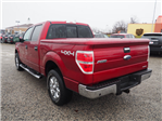 2013 F-150 Super Cab 4x4, Pickup #L66983A - photo 2