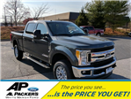 2017 F-250 Crew Cab 4x4 Pickup #H2234 - photo 1