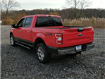 2018 F-150 Crew Cab 4x4, Pickup #J661 - photo 3