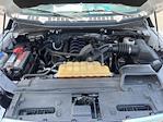 2016 Ford F-150 Regular Cab 4x4, Pickup #7K5431 - photo 42