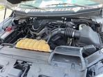 2016 Ford F-150 Regular Cab 4x4, Pickup #7K5431 - photo 44