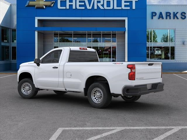 2020 Chevrolet Silverado 1500 Regular Cab 4x4, Pickup #FK33373 - photo 4