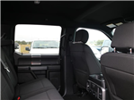 2018 F-150 Crew Cab 4x4 Pickup #16609 - photo 9